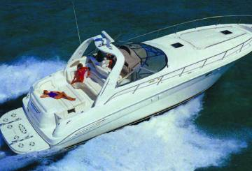 Copy of SEARAY 455